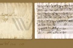 HR-DAPA-905 Zbirka notnih zapisa, XV/XIX st., 2. Arie Nove (1741)