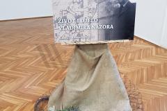 Život i djelo Vladimira Nazora (2019)