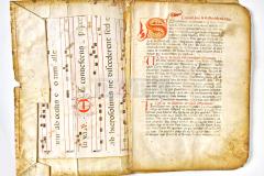 HR-DAPA-424, Zbirka statuta - Statut Buja fragment 15. st.