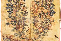 HR-DAPA-797, Zbirka isprava - Obiteljsko stablo obitelji Filipin 17. st.